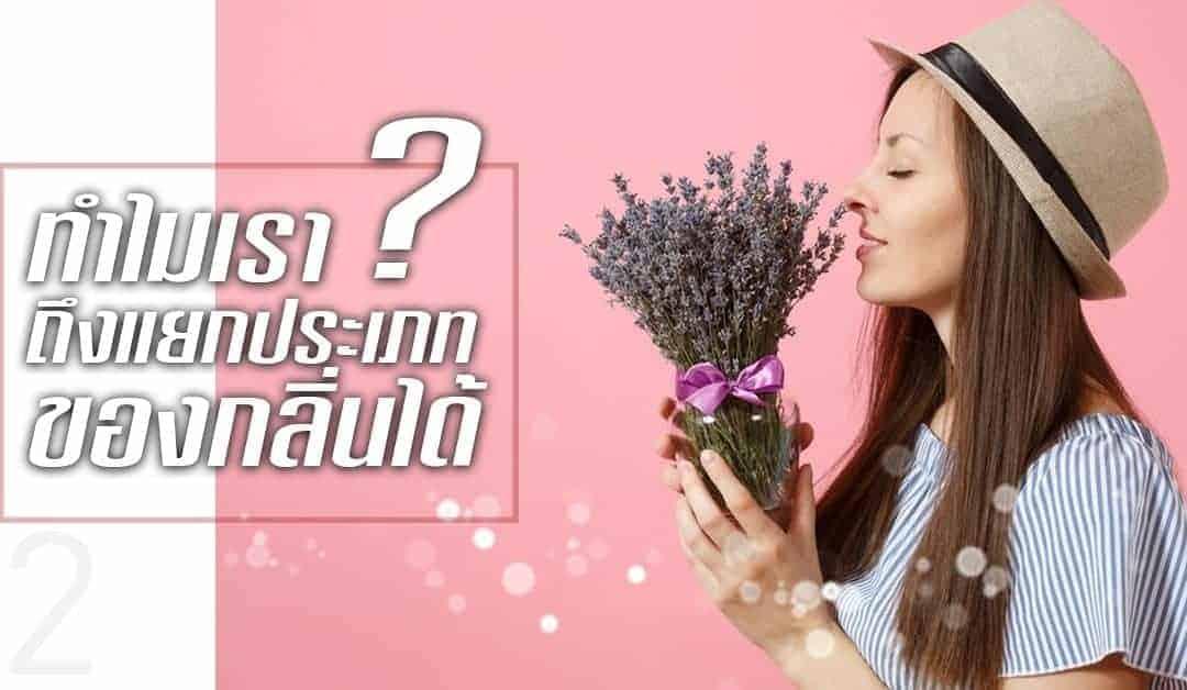 สร้างจินตนาการด้วยกลิ่นสัมผัส ทำไมเราถึงแยกประเภทของกลิ่นได้ (EP2)