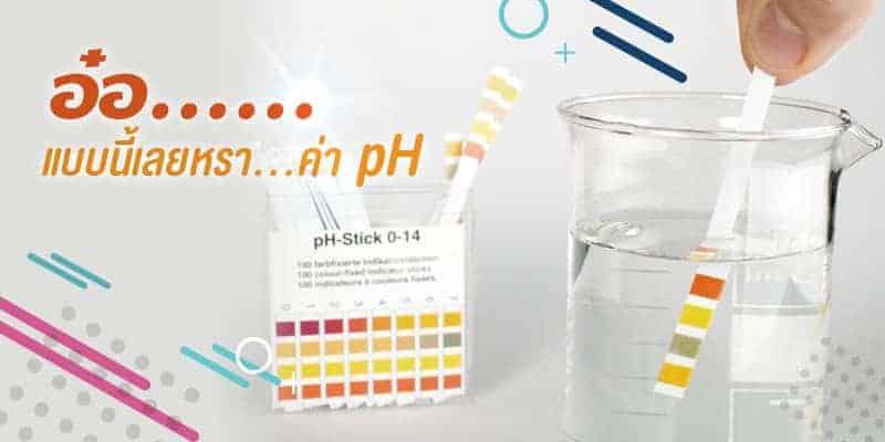 ค่า pH คืออะไร ระดับความเป็นกรด-ด่าง ที่ดีต่อผิวพรรณของเรา